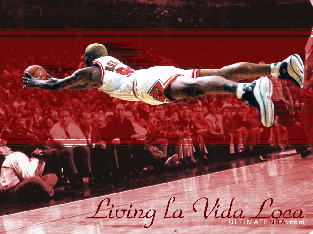 Wallpapers DENNIS RODMAN NBA